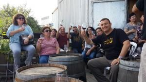 שביל היין בגליל