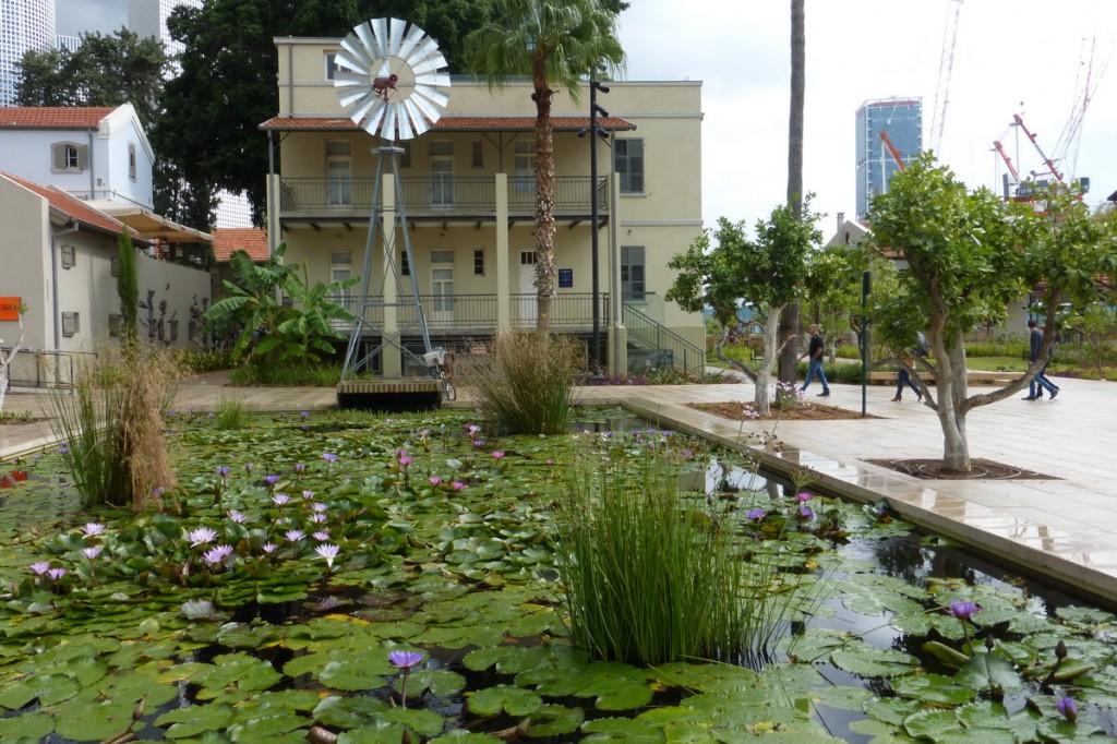 סיור בשרונה-בריכת צמחי המים